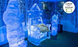Boreal Rasen Gastro Pub: 1 ou 2 ingressos para o IceBar + drinque em copo de gelo (opção sem álcool para crianças) no Ice Bar Boreal