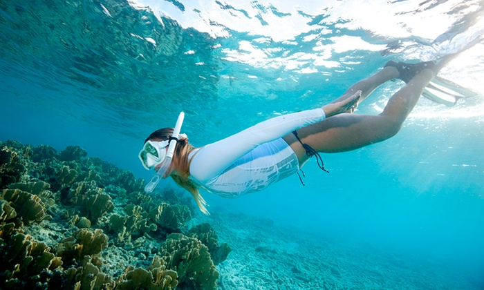 Miami Discount Tours - Venetian Islands: Snorkeling Tour for Two, Four, or Six from Miami Discount Tours (55% Off)