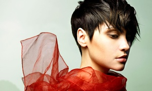 Studio 54 Salon: One or Two Haircuts with Style and Conditioning or a Haircut with Color or Highlights at Studio 54 Salon (Up to 63% Off)