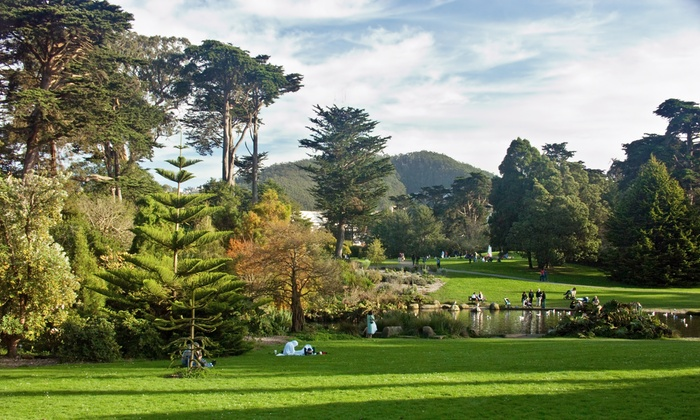 Outdoor Sketching Workshop - Golden Gate Park: Sketch Spring Flora with a Visual Artist
