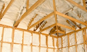 Trela Roofing and Remodeling: Installation of 1,000 Square Feet of Insulation from Trela Roofing and Remodeling (Up to 22% Off)