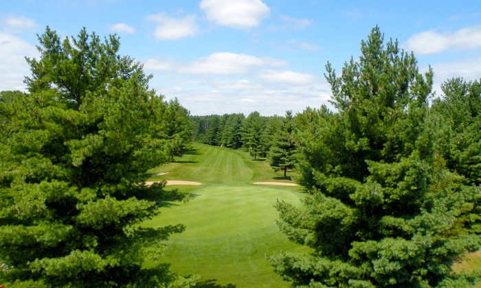 Pine View Golf Course - Pine View Golf Course: 18-Hole Round of Golf with Cart Rental for Two or Four at Pine View Golf Course in Ypsilanti (Up to 46% Off)