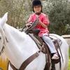 Children's Horse Riding Lesson £9