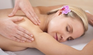 Back to Health: Chiropractic Package with 30- or 60-Minute Massage at Back to Health (Up to 85% Off)