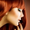 Up to 53% Off Haircut, Highlights, and Color