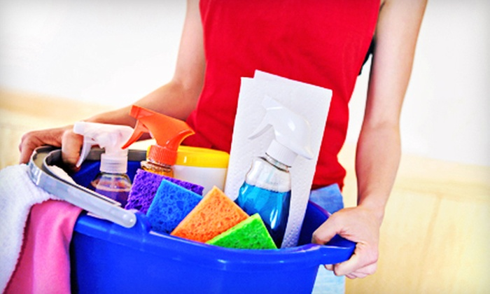 Squeaky Clean of the Palm Beaches - West Palm Beach: $45 for Two Hours of Housecleaning from Squeaky Clean of the Palm Beaches ($90 Value)