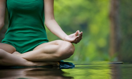 $69 for Ten Yoga Classes at A Yoga Lounge at The Woodhouse Day Spa ($140 Value)