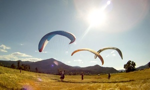 Flying Lizard Paragliding: Introductory Paragliding Lesson for One or Two from Flying Lizard Paragliding (Up to 49% Off)