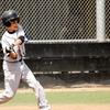 60% Off Camp at Ballpark Baseball Academy