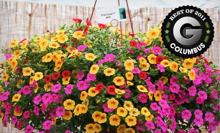 $30 Groupon to Foertmeyer & Sons Greenhouse Co. - Foertmeyer & Sons Greenhouse Co. in Delaware