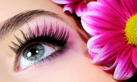 Eyelash Extensions and Eyebrow Shaping with Optional Fill at Bollywood Beauty (Up to 53% Off)