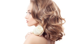 Salon Kristen: $20 for a Haircut and Style with Conditioning, and Brow Wax at Salon Kristen ($60 Value)