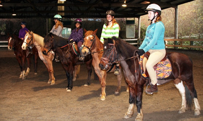 Willow Pond Ranch - Fox Horsemanship: Small-Group Riding Lessons or Riding Camp at Willow Pond Ranch (Up to 54% Off). Five Options Available.
