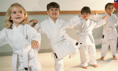 Up to 88% Off Martial Arts Classes