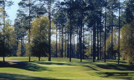 18 Holes, Cart, and Lunch for Two at Lake Blackshear Resort & Golf Club (Up to 58% Off). Two Options Available.