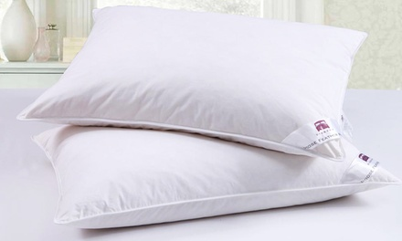 Dickens Goose Feather and Down Pillows