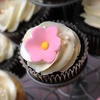 Up to 61% Off Cakes and Desserts in Brookfield