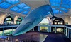 American Museum of Natural History - Manhattan: Dual or Family Membership with Space Show Tickets at American Museum of Natural History (Up to 41% Off)