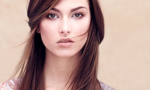 The Pure Path Aveda Concept  Salon: Haircut, Condition, and Optional Highlights at The Pure Path Aveda Concept Salon (Up to 66% Off)
