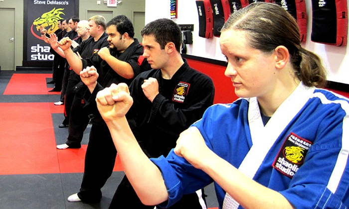 Steve DeMasco's Shaolin Studios - Multiple Locations: One Month of  Martial Arts with Four Semi-Private Lessons at Steve DeMasco's Shaolin Studios  (Up to 89% Off)