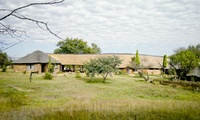 Bela Bela: Two-Night Stay for Up to Four at Nokeng Eco Lodge