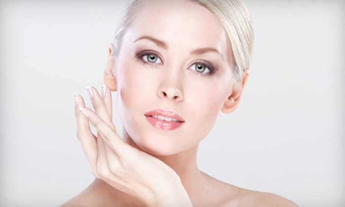 Silk Skin Care - Mission San Jose: $40 Worth of Facials and Beauty Services