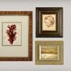 55% Off Custom Framing at Framing & Art Centre