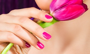 Kris Tall f/x Make Up & Nail Studio: Two Shellac or Spa Manicures or Two Acrylic Gel Fills at Kris Tall f/x Make Up & Nail Studio (Up to 47% Off)