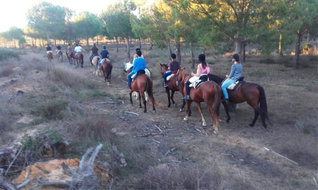 1 o 3 meses de clases de equitación desde 24,95 € en La Suara