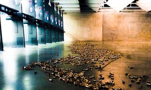 Frisco Gun Club: Shooting-Range Packages for One, Two, or Four at Frisco Gun Club (Up to 72% Off)