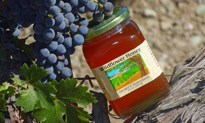 Gerard'z Honey Bees - Multiple Locations: Beekeeping Workshop with Honey and Wine Tasting for One, Two, or Four from Gerard'Z Honeybees (Up to 77% Off)