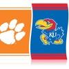 NCAA Fiber Optic Garden Flags