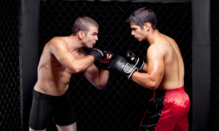 Ray Longo & Chris Weidman's Power MMA - Garden City: One- or Three-Month Membership or Five Private Sessions at Ray Longo & Chris Weidman's Power MMA (Up to 69% Off)