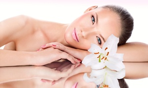 Création privée: Un soin du visage purifiant d'1h, options épilation des sourcils et maquillage de jour dès 19,90 € chez Création Privée