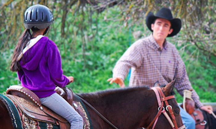 JM Performance Horse - Multiple Locations: Two or Four Horseback-Riding Lessons or Two Mommy-and-Me Horse-Leading Sessions at JM Performance Horse (Up to 51% Off)
