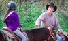 Up to 51% Off Horseback Riding