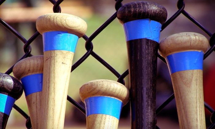 Advantage Baseball - Copperfield: 4, 8, 12, or 20 Half-Hour Machine Pitch Batting-Cage Sessions at Advantage Baseball (Up to 84% Off)