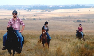 Adventure Horse Riding: Beginner or Intermediate Out-Ride with Braai Pack and Sides for R490 for Two with Adventure Horse Riding (Up to 55% Off)