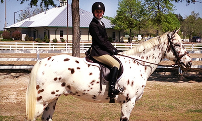 Towne Lake Equestrian Club - Woodstock: Private Horseback-Riding Lessons at Towne Lake Equestrian Club (Up to 62% Off). Three Options Available.