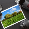 Up to 57% Off Photography Classes at Isla Studio