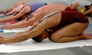 Bikram Yoga AZ: $34 for One Month of Yoga & Pilates Classes at Bikram Yoga AZ – Paradise Valley & Scottsdale ($160 Value)