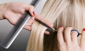Marie Mcalpine at The Beauty Bar Salon: $35 for a Haircut and Conditioning Treatment from Marie Mcalpine at the Beauty Bar Salon ($65 Value)