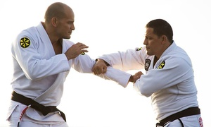 University of Jiu Jitsu: Three Jiu-Jitsu Classes or One Month of Classes for a Child or Adult at University of Jiu Jitsu (Up to 81% Off)