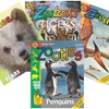 Up to 75% Off Zoobooks Magazine Subscriptions