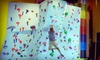 Trampoline Cageball & Climbing Gym - Murrieta: All-Day Visits for Two, Four, or Six to Trampoline Cageball & Climbing Gym (Half Off)