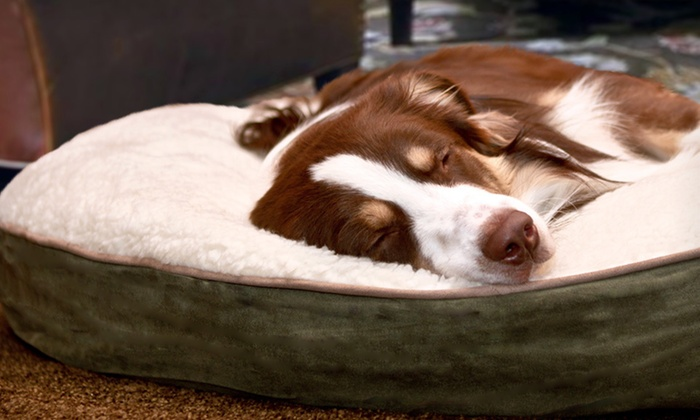 """Furhaven Big Dog 40"""" Gusseted Pillows: $29.99 for a Furhaven Big Dog 40"""" Round Pillow ($79.99 List Price). Seven Colors Available. Free Shipping and Returns."""
