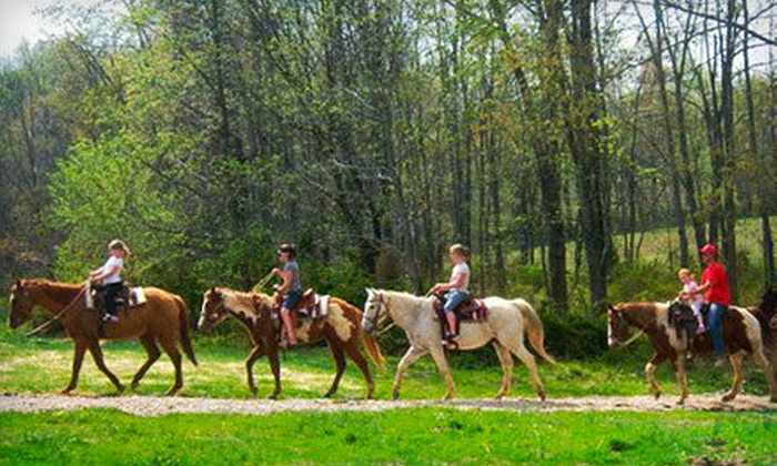 Santa's Stables - Saint Meinrad: 45-Minute Guided Trail Ride on Horseback for One or Two at Santa's Stables in Lamar (Half Off)