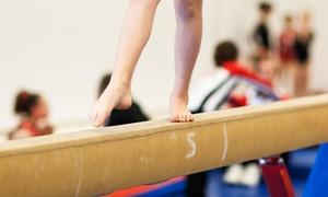 Olympiad Gymnastics: $10 for Two Gymnastics Classes at Olympiad Gymnastics ($36 Value)