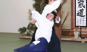 North Florida School Of Aikido: $25 for $70 Worth of Martial-Arts Lessons — North Florida School of Aikido
