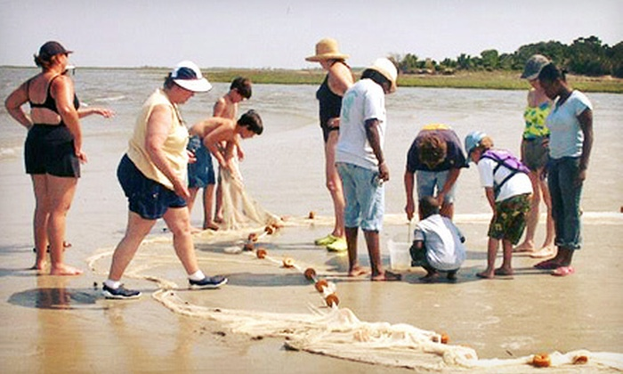 Tybee Beach Ecology Trips - Tybee Island: Two-Hour Beach Tour for Two, Four, or Six from Tybee Beach Ecology Trips (Up to 54% Off)